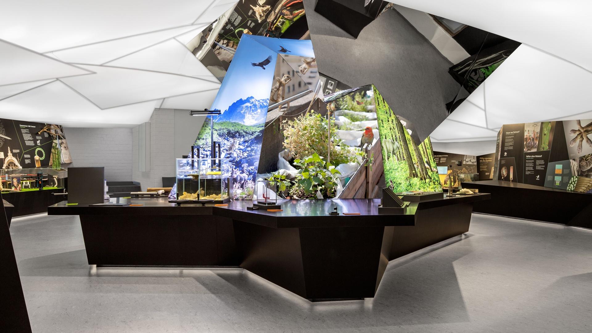 Ausstellung Bionicum Tiergarten Nürnberg